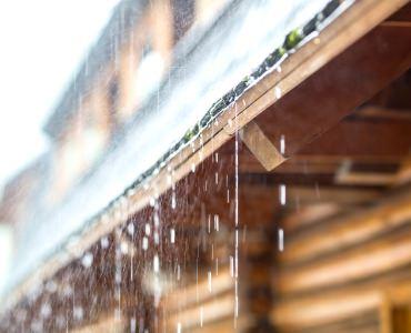 雨による自浄効果