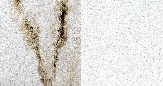 外壁の汚れを除去
